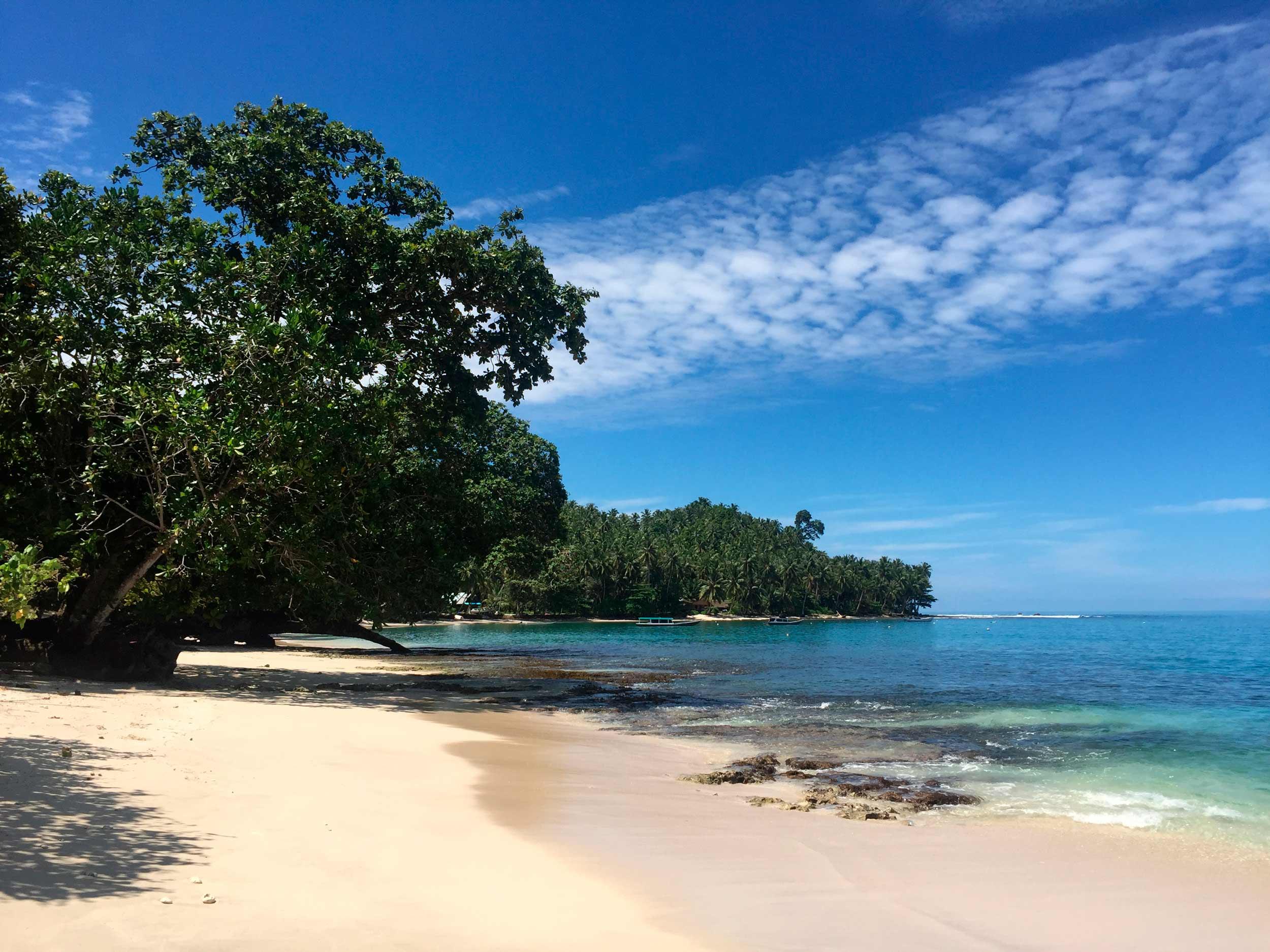 A trip to Mentawai Indonesia